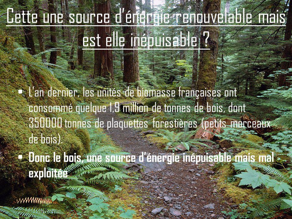 Cette une source dénergie renouvelable mais est elle inépuisable ? Lan dernier, les unités de biomasse françaises ont consommé quelque 1,9 million de