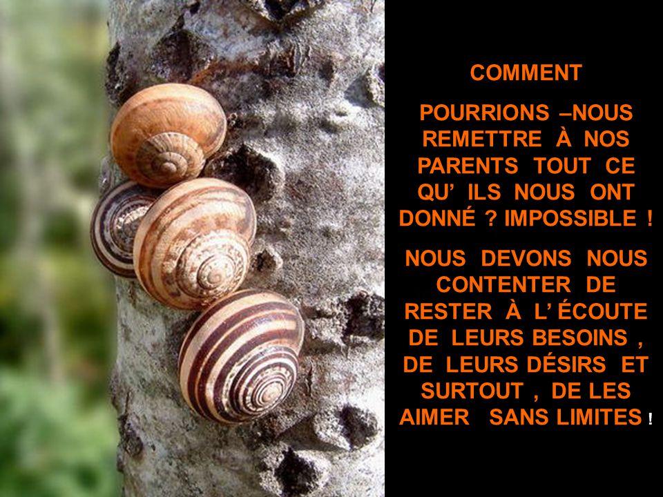 C EST QUAND PLUS RIEN NE VA QU ON SE REND COMPTE À QUEL POINT SES PARENTS SONT RÉCONFORTANTS !