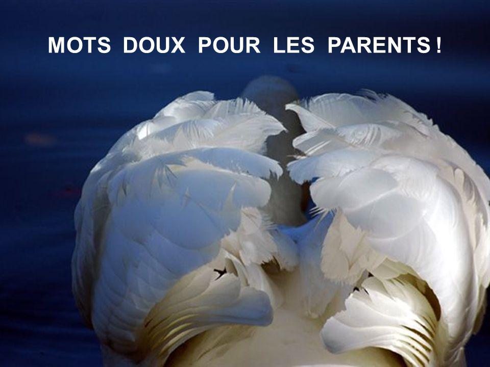 AUJOURD HUI JE VEUX REMERCIER TOUS NOS ANCÊTRES : GRAND -PAPA & GRAND –MAMAN ET SURTOUT NOS PARENTS, NOS CHERS PARENTS QUI NOUS ONT LEGUÉ CETTE BELLE NATURE.