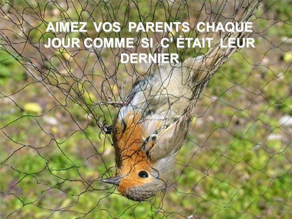 MOTS DOUX POUR LES PARENTS !