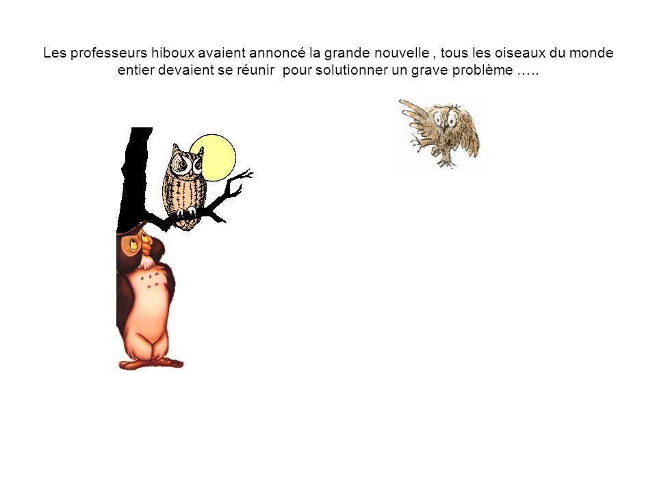 Les professeurs hiboux avaient annoncé la grande nouvelle, tous les oiseaux du monde entier devaient se réunir pour solutionner un grave problème …..