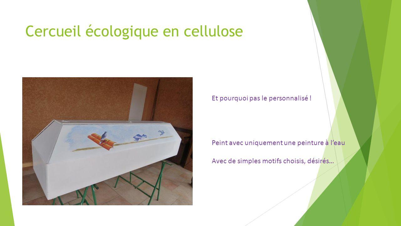Cercueil écologique en cellulose Et pourquoi pas le personnalisé .