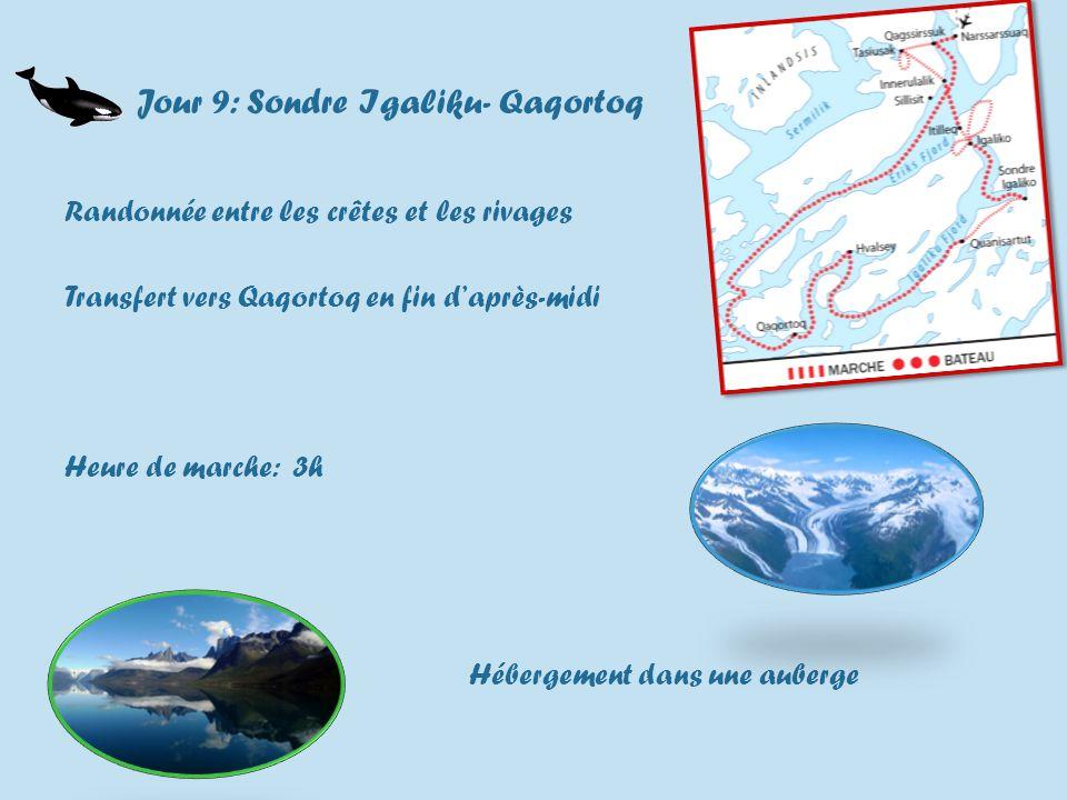 Jour 9: Sondre Igaliku- Qaqortoq Randonnée entre les crêtes et les rivages Transfert vers Qaqortoq en fin daprès-midi Heure de marche: 3h Hébergement dans une auberge