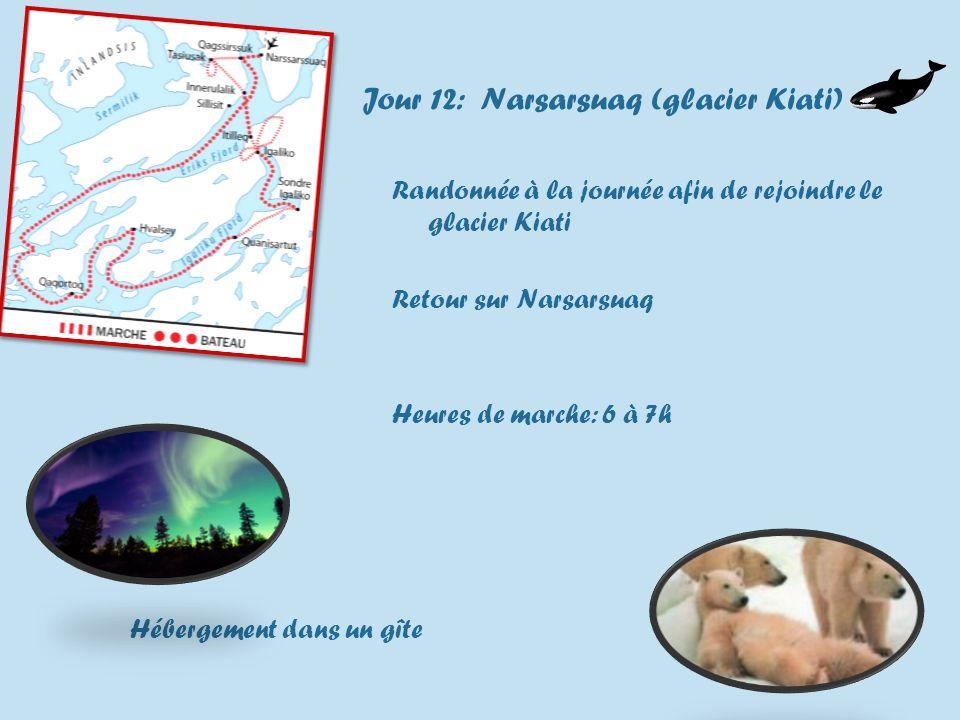 Jour 12: Narsarsuaq (glacier Kiati) Randonnée à la journée afin de rejoindre le glacier Kiati Retour sur Narsarsuaq Heures de marche: 6 à 7h Hébergement dans un gîte