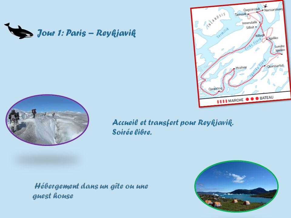 Jour 1: Paris – Reykjavik Accueil et transfert pour Reykjavik.