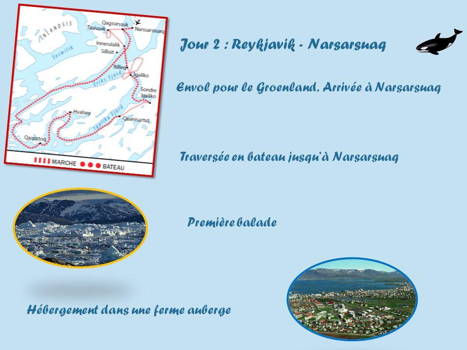 Jour 2 : Reykjavik - Narsarsuaq Envol pour le Groenland.