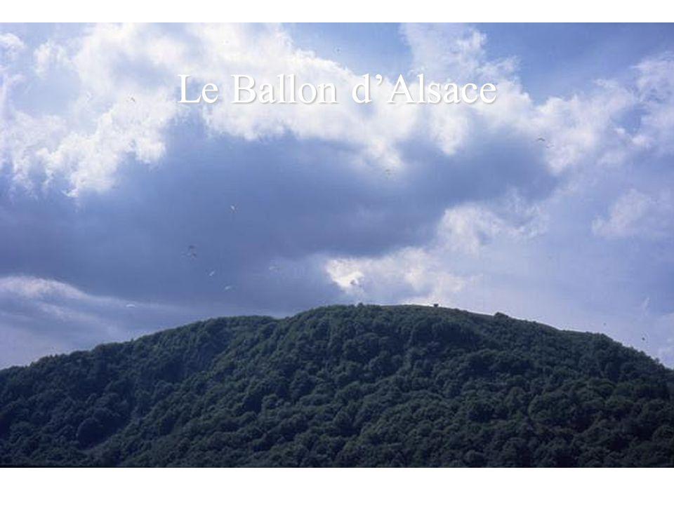 Plateau du Vercors au dessus de Villard de Lans