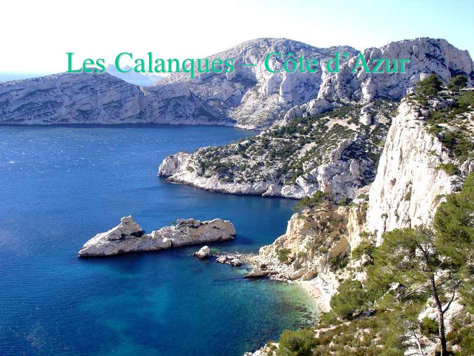 Etang de Thau - Languedoc