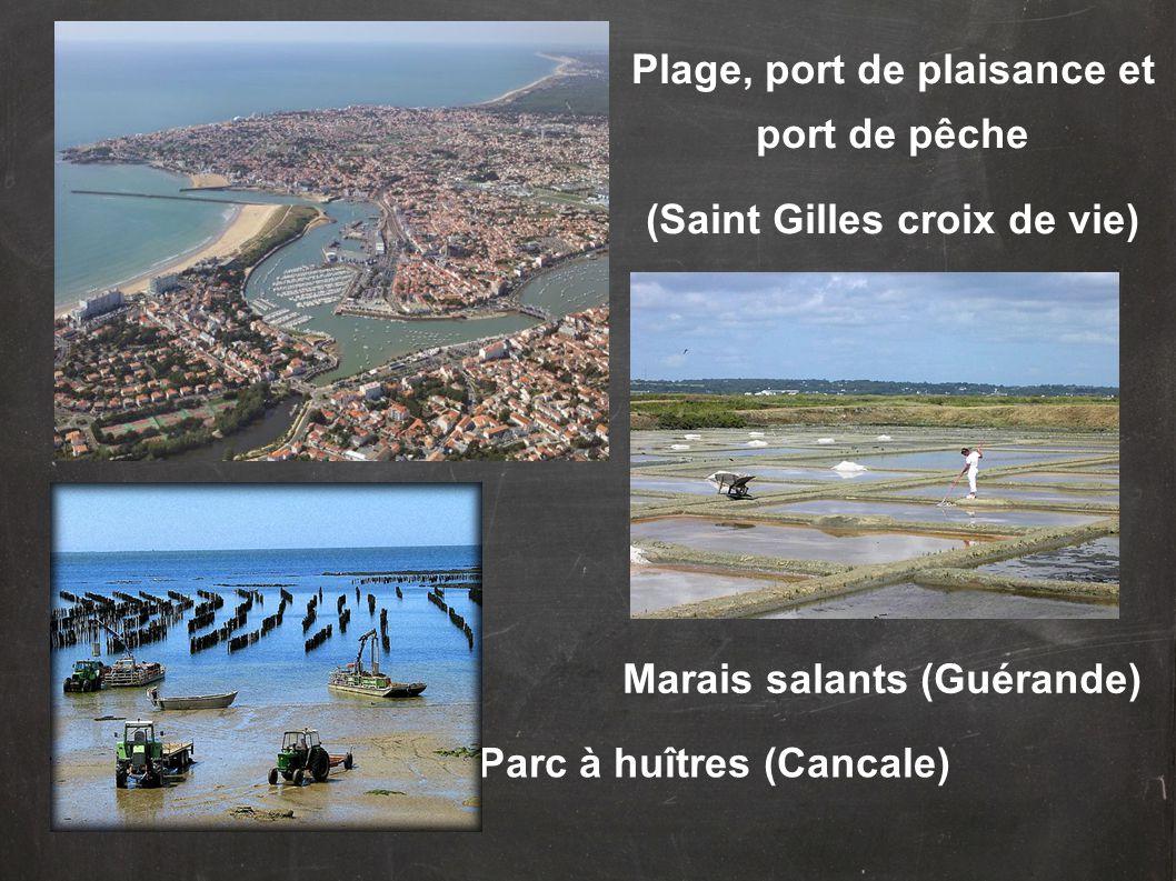 Plage, port de plaisance et port de pêche (Saint Gilles croix de vie) Parc à huîtres (Cancale) Marais salants (Guérande)