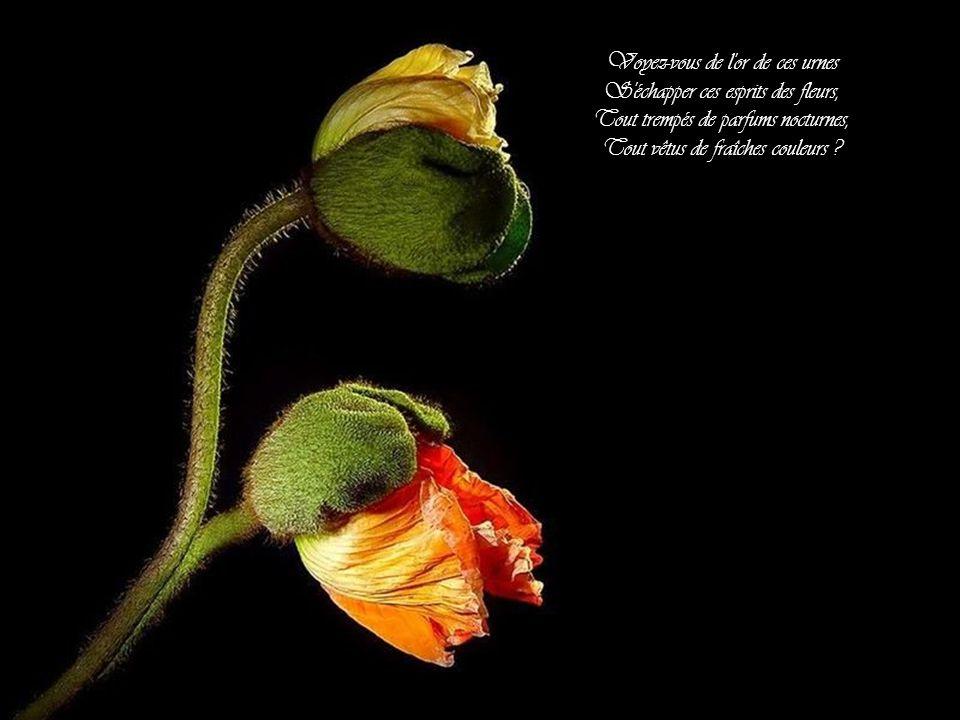 Voyez-vous de l or de ces urnes S échapper ces esprits des fleurs, Tout trempés de parfums nocturnes, Tout vêtus de fraîches couleurs ?