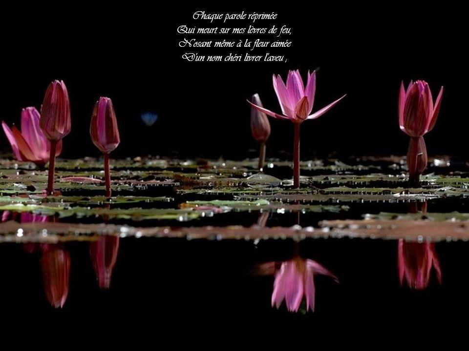 Chaque rayon d'humide flamme Qui jaillit de vos yeux si doux ; Chaque soupir qui de mon âme S'élance et palpite vers vous ;
