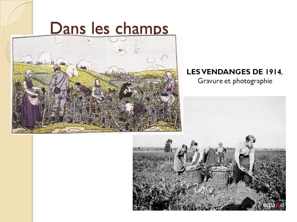 Dans les champs LES VENDANGES DE 1914, Gravure et photographie