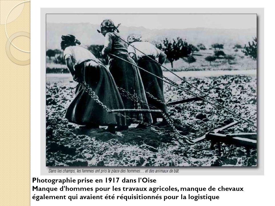 Photographie prise en 1917 dans l'Oise Manque d'hommes pour les travaux agricoles, manque de chevaux également qui avaient été réquisitionnés pour la