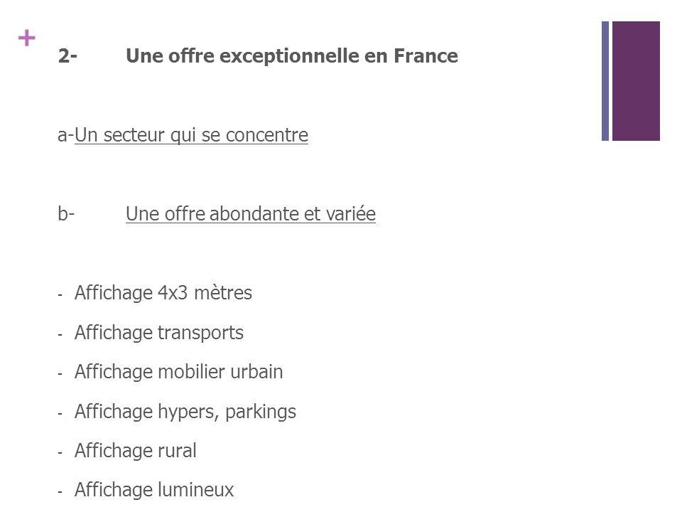 + 2-Une offre exceptionnelle en France a-Un secteur qui se concentre b-Une offre abondante et variée - Affichage 4x3 mètres - Affichage transports - Affichage mobilier urbain - Affichage hypers, parkings - Affichage rural - Affichage lumineux