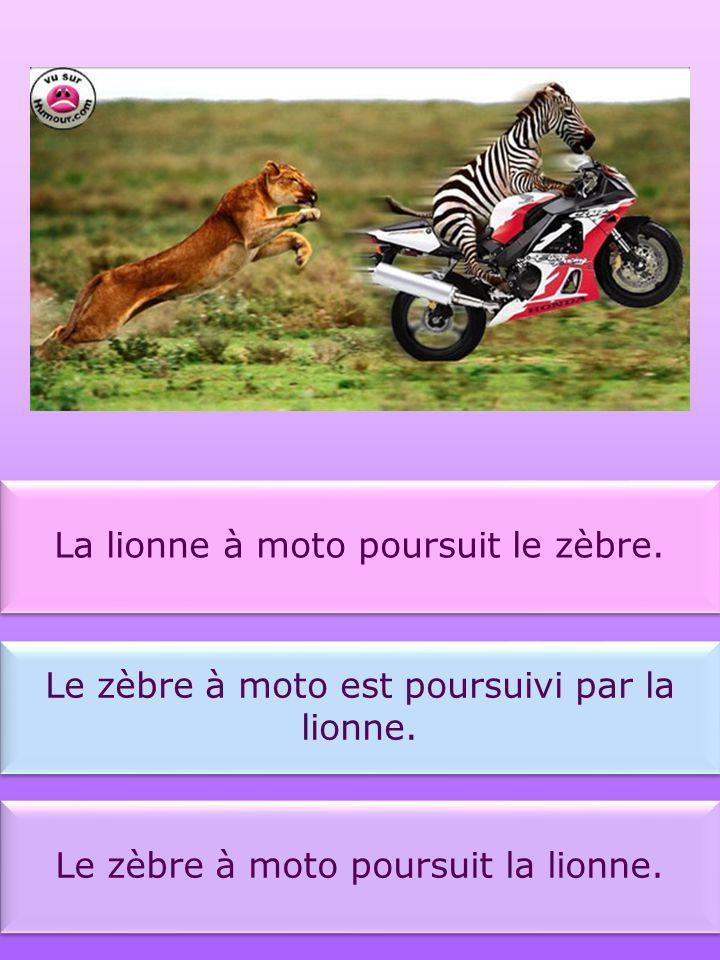 Le lion effraie la lionne. La lionne est effrayée par le lion. Le lion est effrayé par la lionne.