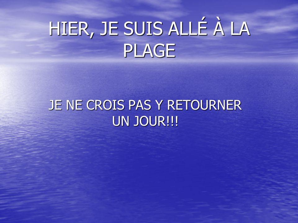 HIER, JE SUIS ALLÉ À LA PLAGE JE NE CROIS PAS Y RETOURNER UN JOUR!!!