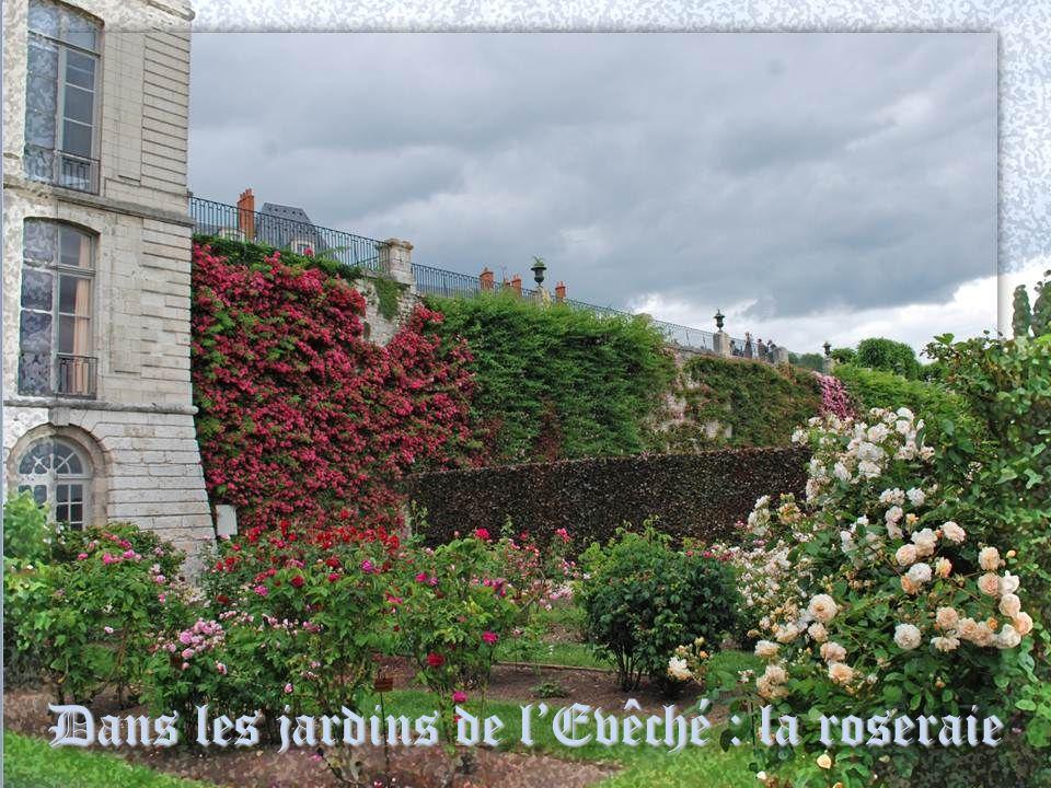 Détail du fronton de lEvêché Les jardins de lEvêché ont été aménagés au début du 18 e siècle après linstallation du nouvel évêque dans son palais épis