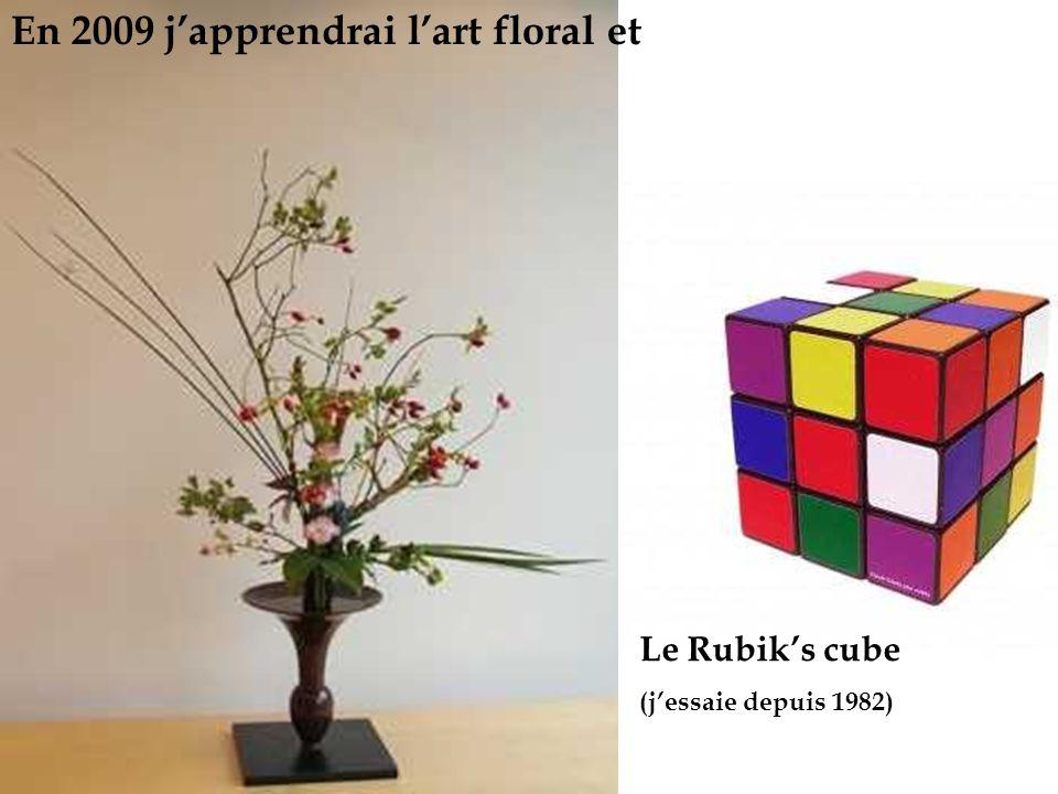 En 2009 japprendrai lart floral et Le Rubiks cube (jessaie depuis 1982)