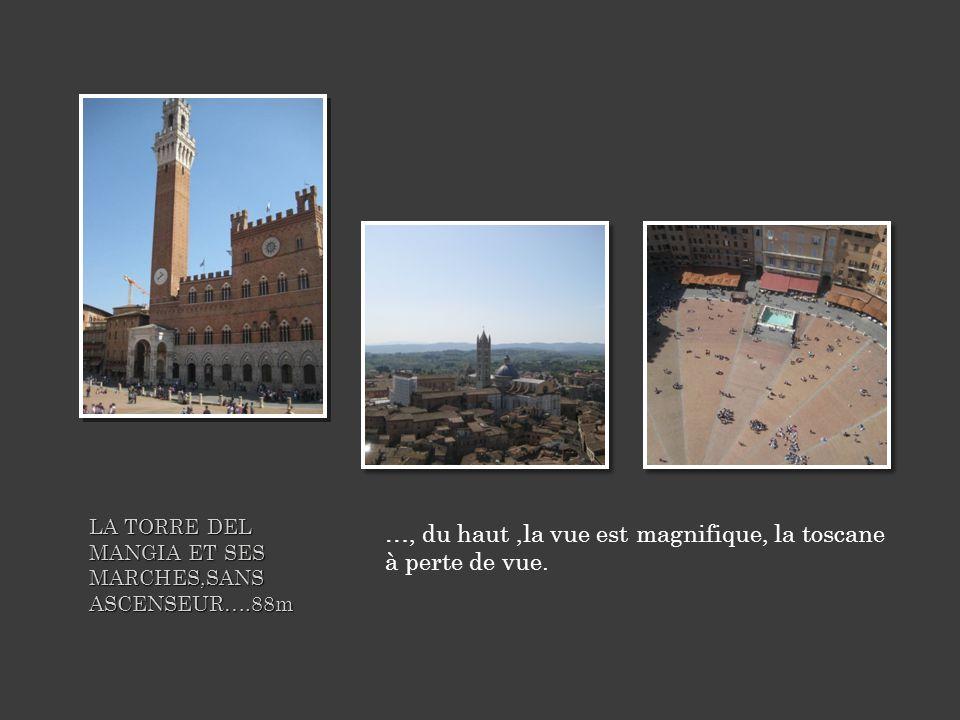 LA TORRE DEL MANGIA ET SES MARCHES,SANS ASCENSEUR….88m …, du haut,la vue est magnifique, la toscane à perte de vue.
