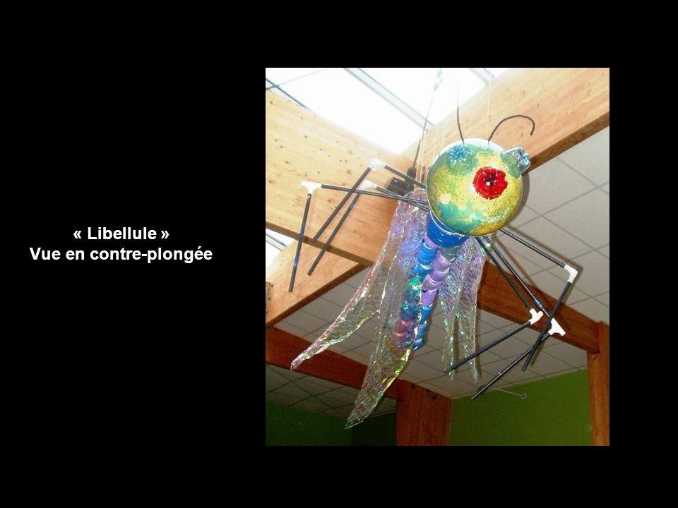 « Libellule » Vue en contre-plongée