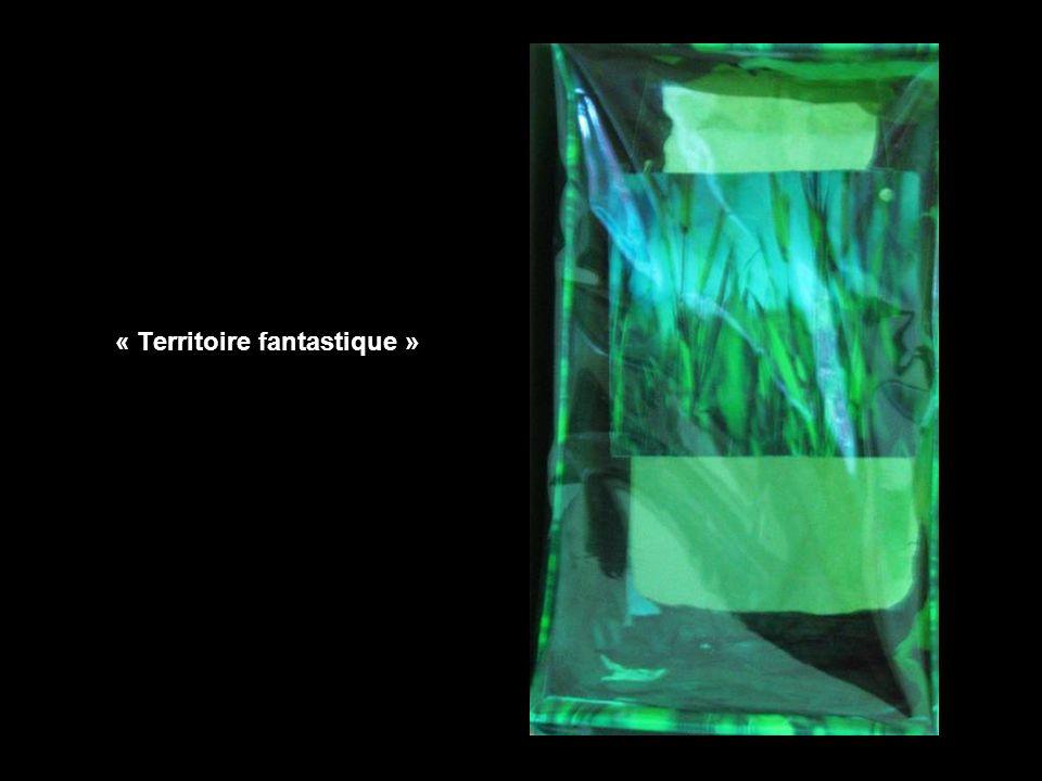 « Territoire fantastique »