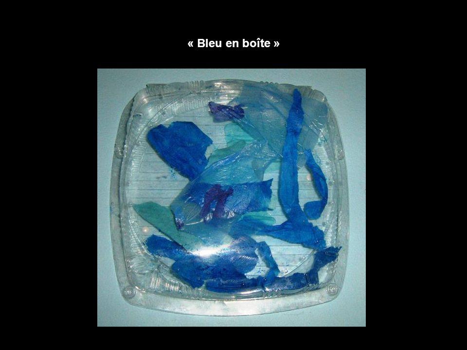 « Bleu en boîte »