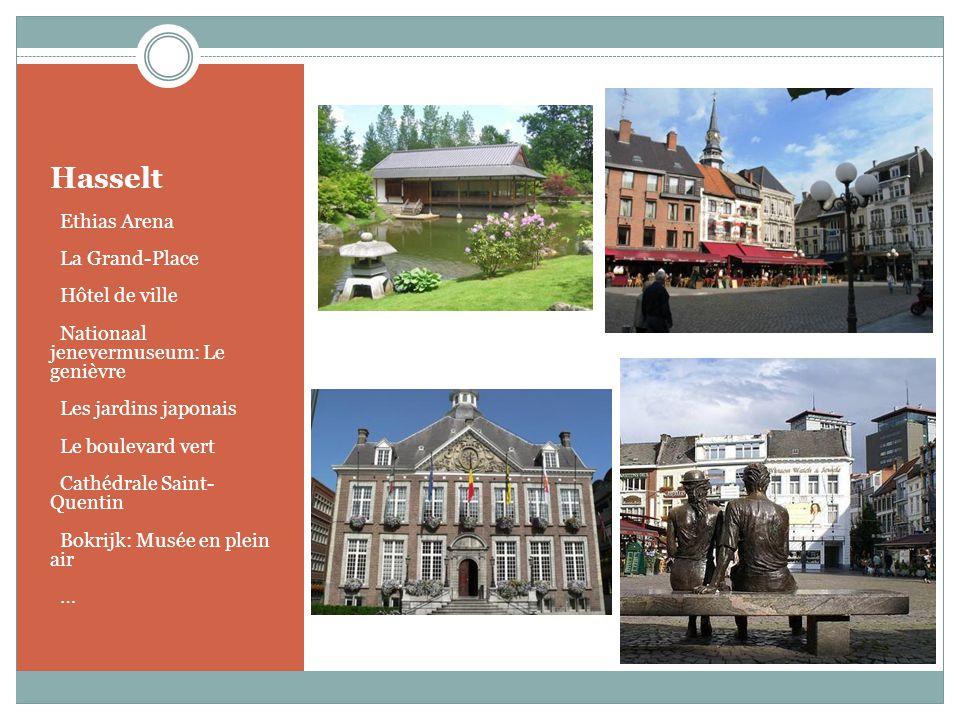 Hasselt o Ethias Arena o La Grand-Place o Hôtel de ville o Nationaal jenevermuseum: Le genièvre o Les jardins japonais o Le boulevard vert o Cathédral