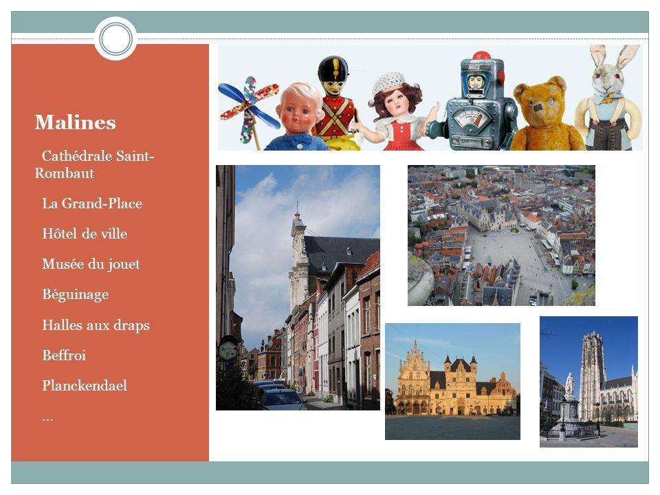 Malines o Cathédrale Saint- Rombaut o La Grand-Place o Hôtel de ville o Musée du jouet o Béguinage o Halles aux draps o Beffroi o Planckendael o…o…