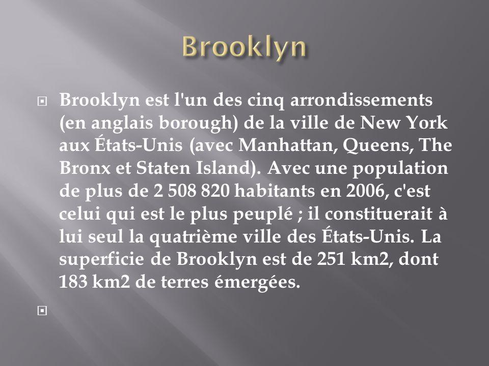 Brooklyn est l'un des cinq arrondissements (en anglais borough) de la ville de New York aux États-Unis (avec Manhattan, Queens, The Bronx et Staten Is