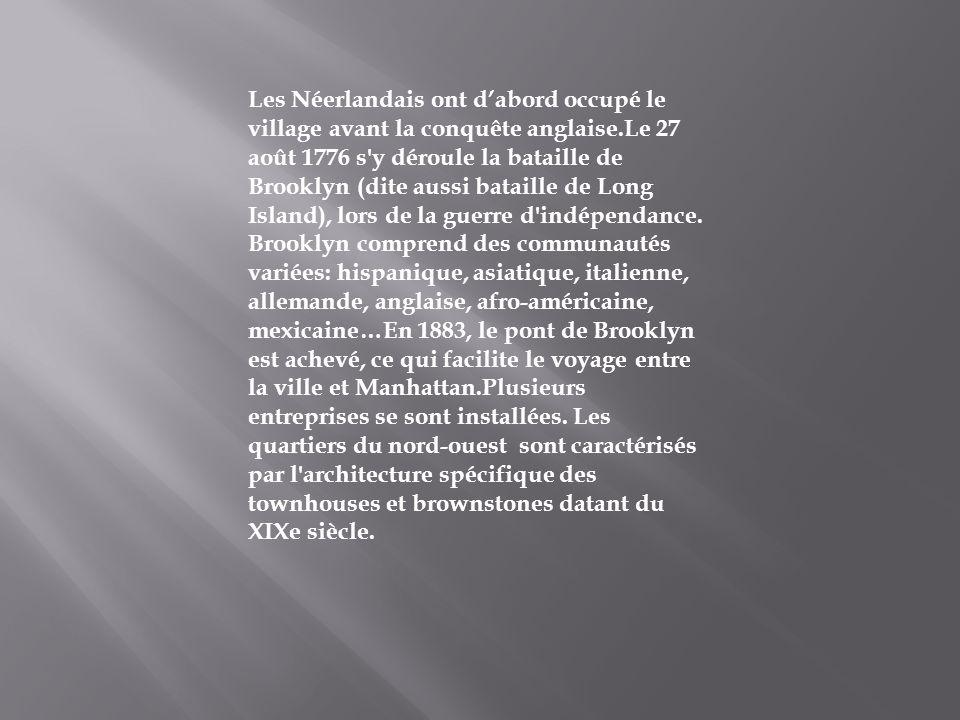 Les Néerlandais ont dabord occupé le village avant la conquête anglaise.Le 27 août 1776 s'y déroule la bataille de Brooklyn (dite aussi bataille de Lo
