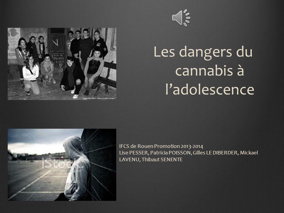 IFCS de Rouen Promotion 2013-2014 Lise PESSER, Patricia POISSON, Gilles LE DIBERDER, Mickael LAVENU, Thibaut SENENTE Les dangers du cannabis à ladolescence