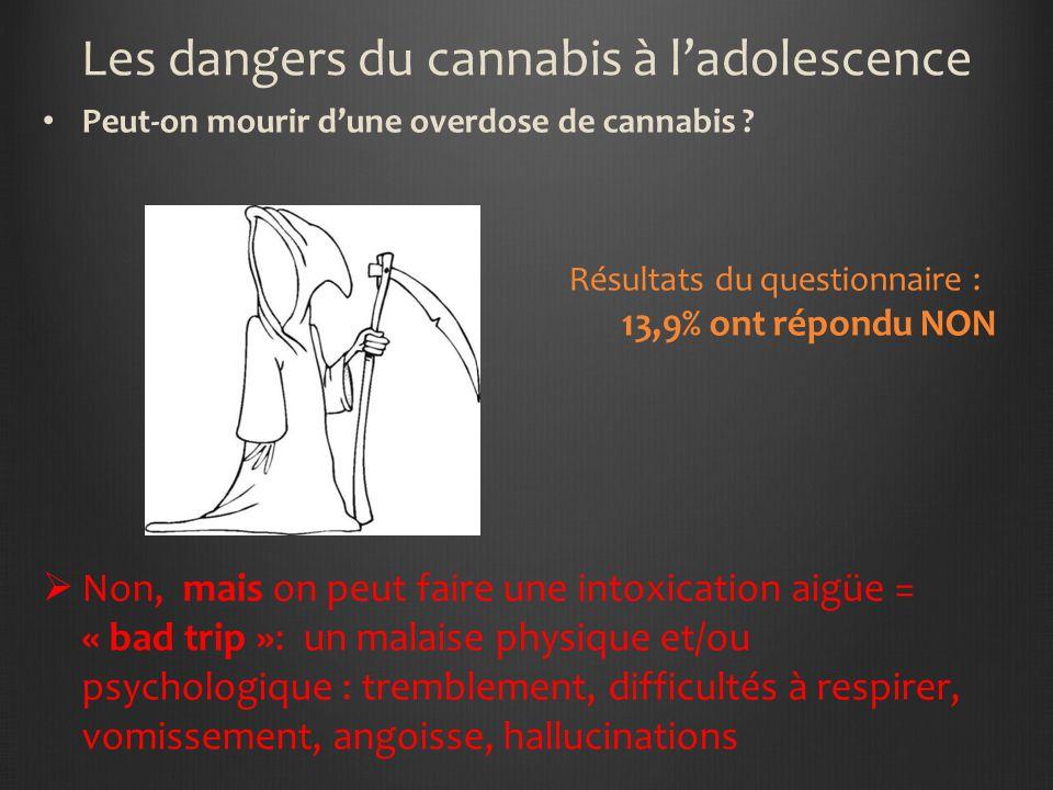 Les dangers du cannabis à ladolescence Mélanger le cannabis avec lalcool, des médicaments (tranquillisants…) ou dautres drogues ne comporte pas de ris