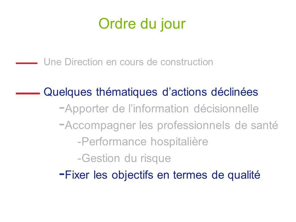 Ordre du jour Une Direction en cours de construction Quelques thématiques dactions déclinées - Apporter de linformation décisionnelle - Accompagner les professionnels de santé -Performance hospitalière -Gestion du risque - Fixer les objectifs en termes de qualité