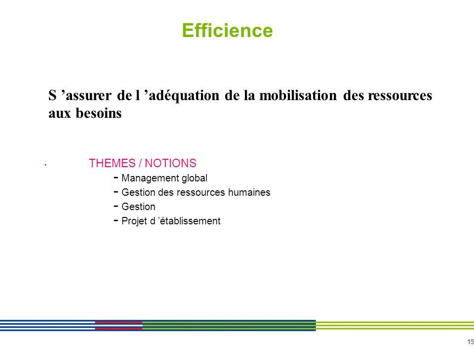 15 Efficience THEMES / NOTIONS - Management global - Gestion des ressources humaines - Gestion - Projet d établissement S assurer de l adéquation de la mobilisation des ressources aux besoins
