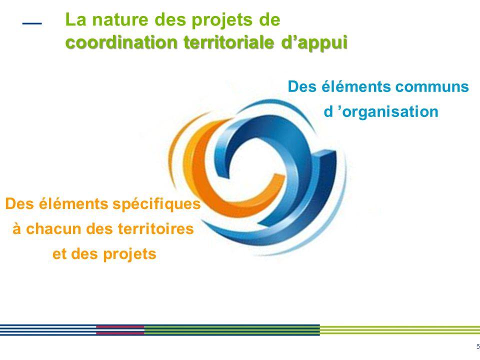 5 coordination territoriale dappui La nature des projets de coordination territoriale dappui Des éléments spécifiques à chacun des territoires et des