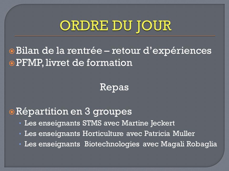 Bilan de la rentrée – retour dexpériences PFMP, livret de formation Repas Répartition en 3 groupes Les enseignants STMS avec Martine Jeckert Les ensei