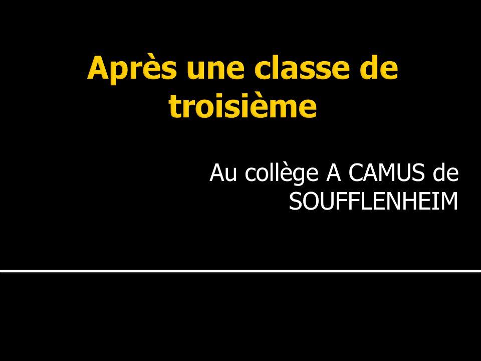 Au collège A CAMUS de SOUFFLENHEIM
