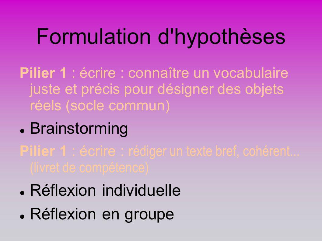Formulation d'hypothèses Pilier 1 : écrire : connaître un vocabulaire juste et précis pour désigner des objets réels (socle commun) Brainstorming Pili