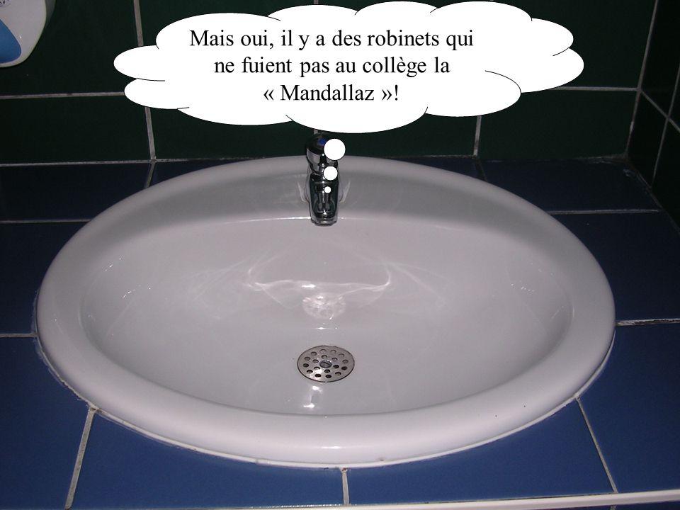 Mais oui, il y a des robinets qui ne fuient pas au collège la « Mandallaz »!
