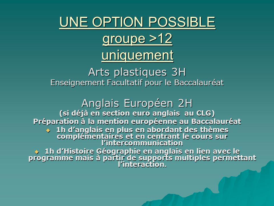 UNE OPTION POSSIBLE groupe >12 uniquement Arts plastiques 3H Enseignement Facultatif pour le Baccalauréat Anglais Européen 2H (si déjà en section euro