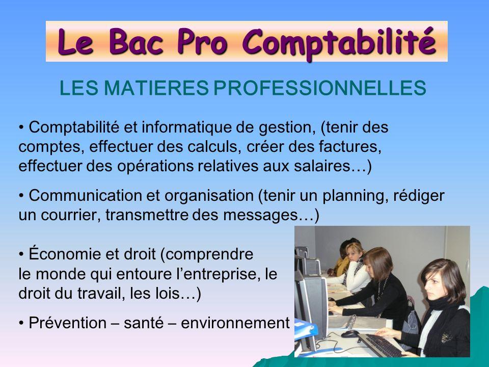 LES MATIERES PROFESSIONNELLES Comptabilité et informatique de gestion, (tenir des comptes, effectuer des calculs, créer des factures, effectuer des op