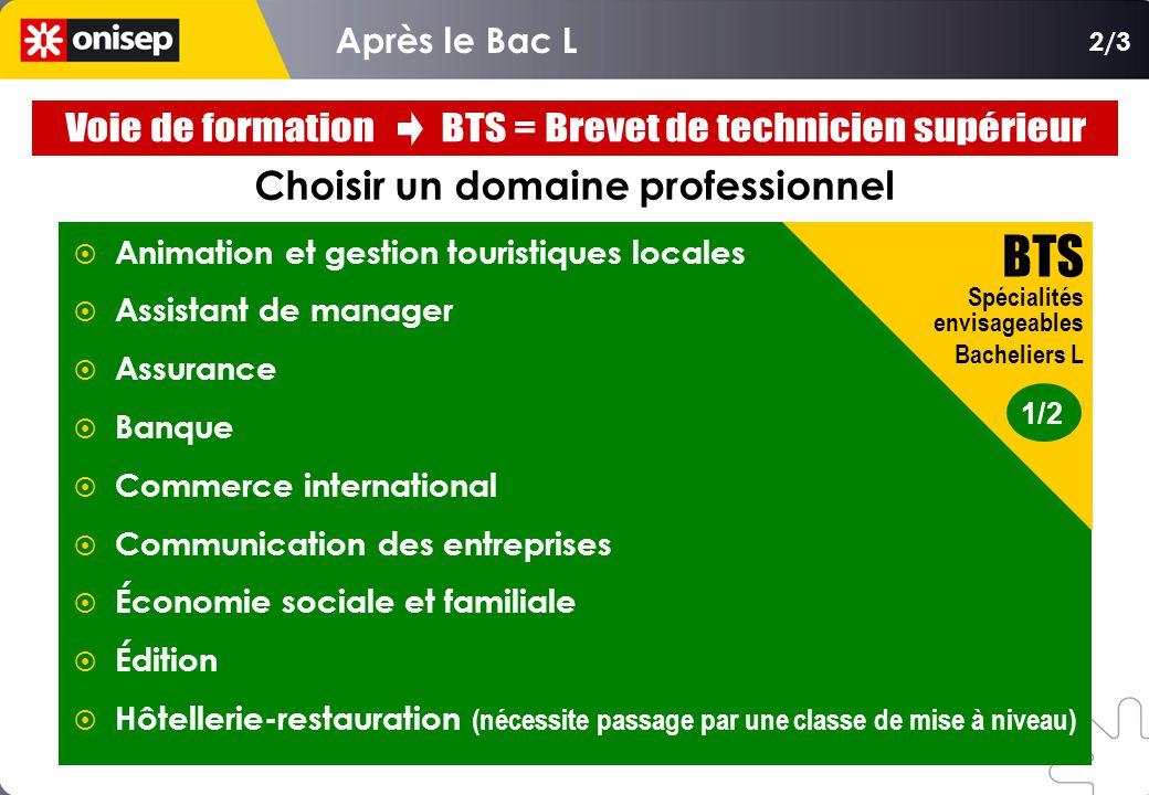 Choisir un domaine professionnel Animation et gestion touristiques locales Assistant de manager Assurance Banque Commerce international Communication