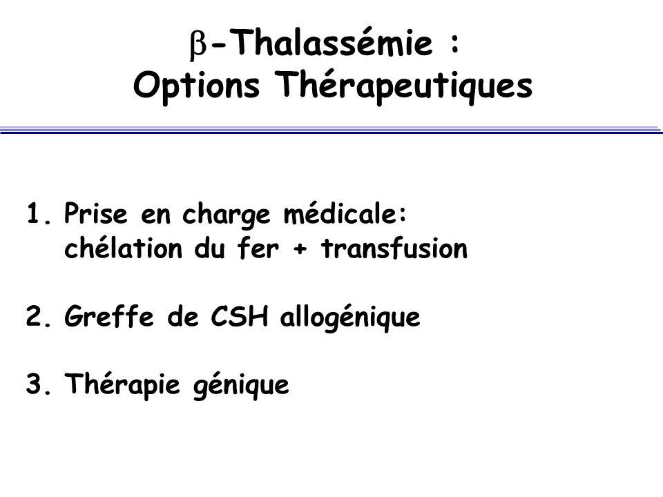 -Thalassémie : Options Thérapeutiques 1.Prise en charge médicale: chélation du fer + transfusion 2.Greffe de CSH allogénique 3.Thérapie génique