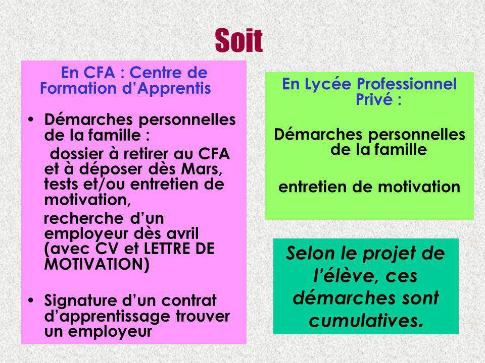 Soit En CFA : Centre de Formation dApprentis Démarches personnelles de la famille : dossier à retirer au CFA et à déposer dès Mars, tests et/ou entret