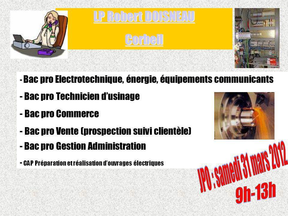 - Bac pro Electrotechnique, énergie, équipements communicants - Bac pro Technicien dusinage - Bac pro Commerce - Bac pro Vente (prospection suivi clie