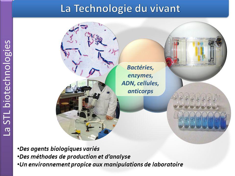 La STL biotechnologies Des agents biologiques variés Des méthodes de production et danalyse Un environnement propice aux manipulations de laboratoire