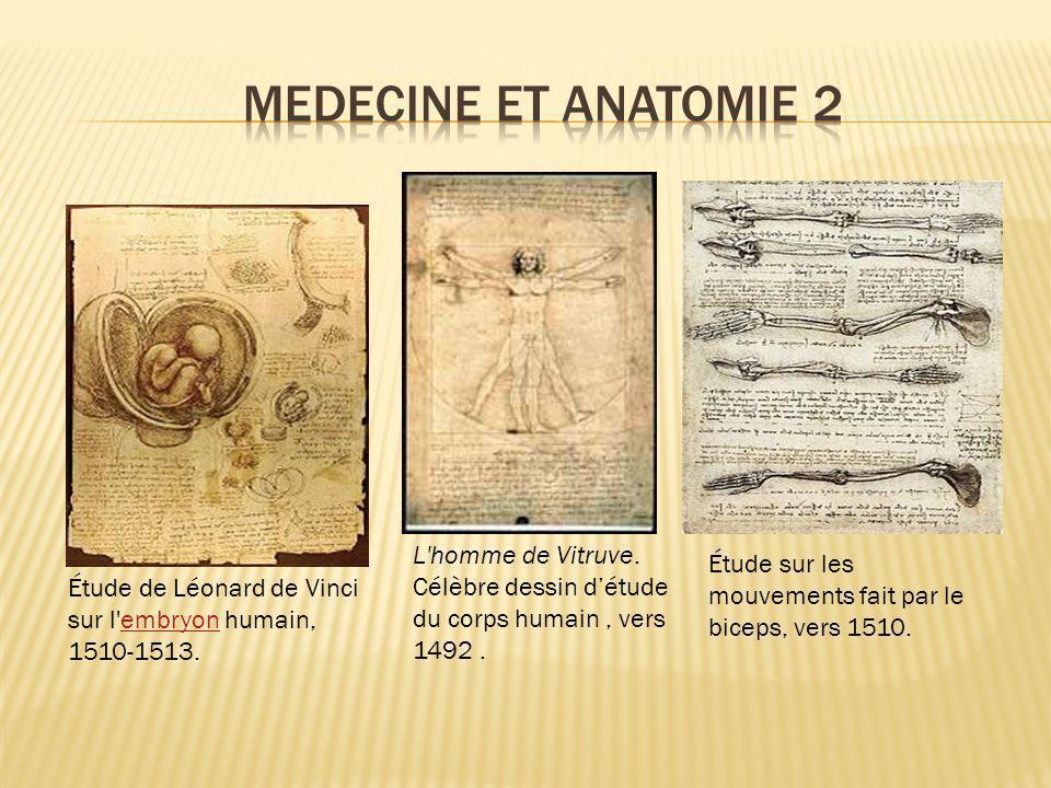 Étude de Léonard de Vinci sur l'embryon humain, 1510-1513.embryon L'homme de Vitruve. Célèbre dessin détude du corps humain, vers 1492. Étude sur les