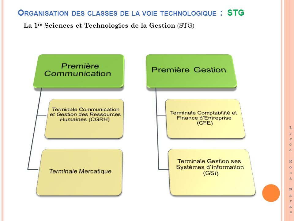 O RGANISATION DES CLASSES DE LA VOIE TECHNOLOGIQUE : STG La 1 re Sciences et Technologies de la Gestion (STG)