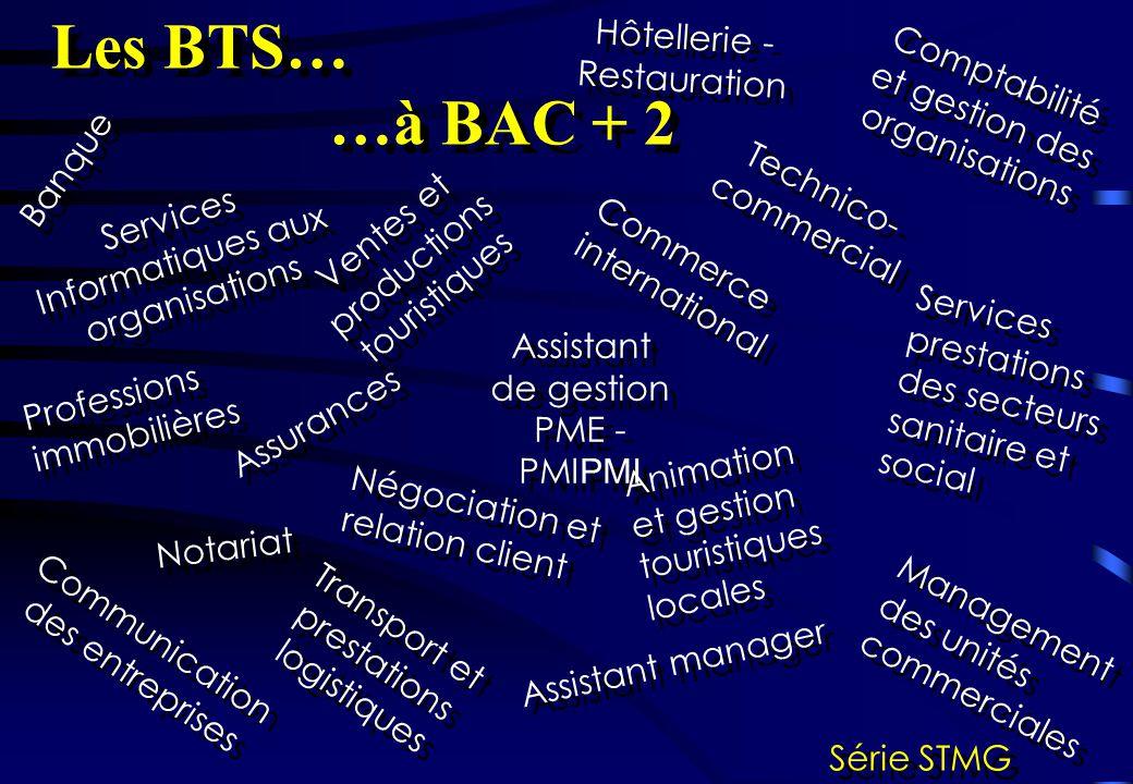 Services Informatiques aux organisations Banque Hôtellerie - Restauration Comptabilité et gestion des organisations Professions immobilières Assistant