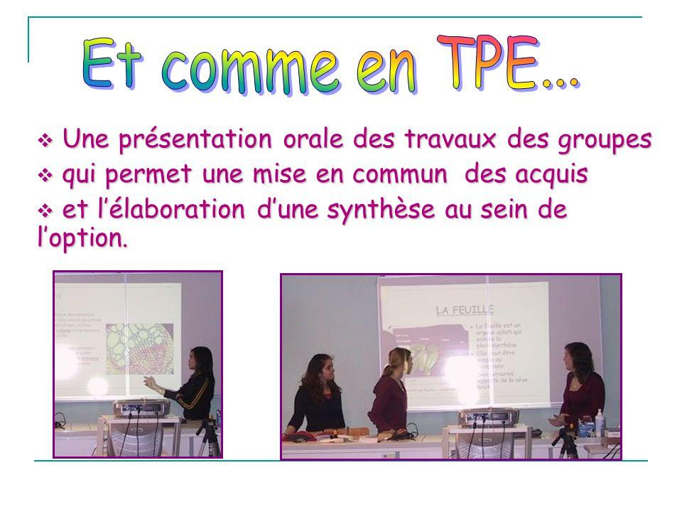 Une présentation orale des travaux des groupes Une présentation orale des travaux des groupes qui permet une mise en commun des acquis qui permet une